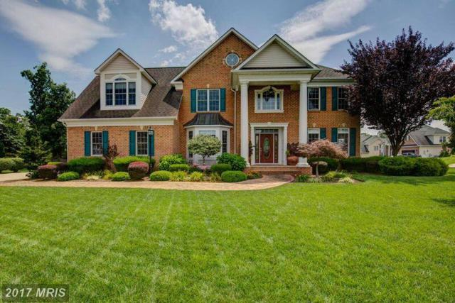 108 Cahille Drive, Winchester, VA 22602 (#FV10026361) :: Pearson Smith Realty