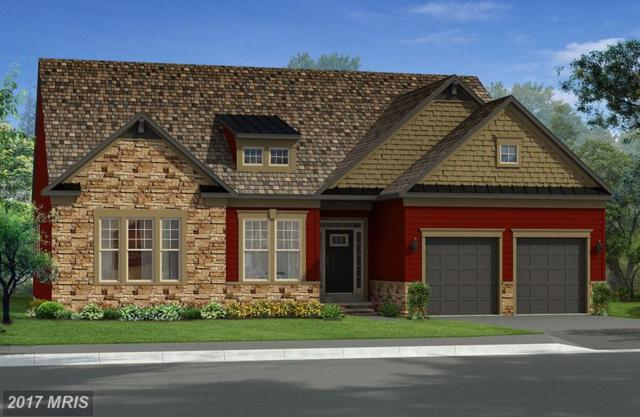 Bridgewater Drive, Stephens City, VA 22655 (#FV10027755) :: LoCoMusings