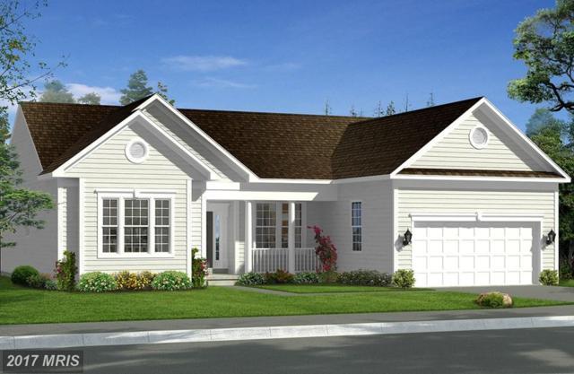 Bridgewater Drive, Stephens City, VA 22655 (#FV10027819) :: LoCoMusings