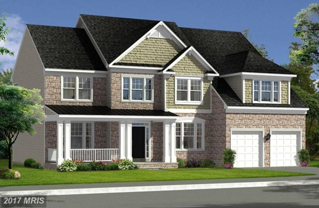 Bridgewater Drive, Stephens City, VA 22655 (#FV10027864) :: LoCoMusings