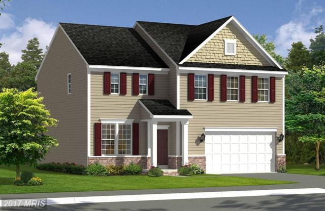 Bridgewater Drive, Stephens City, VA 22655 (#FV10028528) :: The Nemerow Team