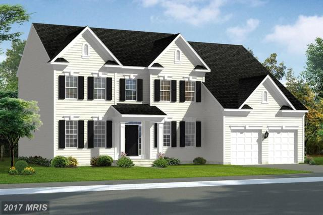 Bridgewater Drive, Stephens City, VA 22655 (#FV10028549) :: The Nemerow Team