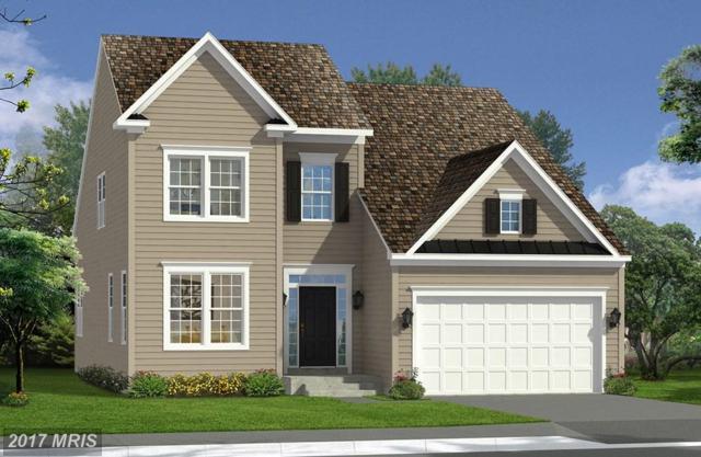 Bridgewater Drive, Stephens City, VA 22655 (#FV10028615) :: LoCoMusings