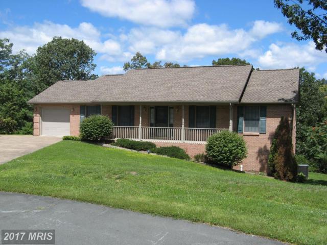 243 Brandylion Drive, Stephens City, VA 22655 (#FV10032207) :: Pearson Smith Realty