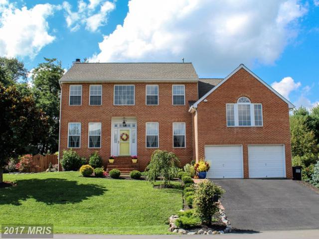 303 Colin Court, Winchester, VA 22601 (#FV10035193) :: Pearson Smith Realty