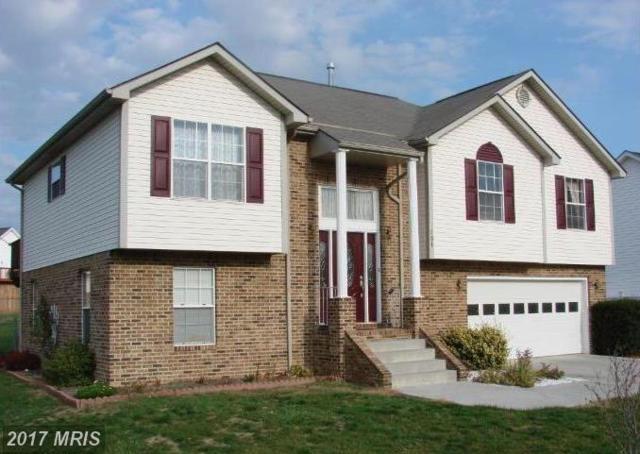 101 Cumberland Court, Stephens City, VA 22655 (#FV10035313) :: Pearson Smith Realty