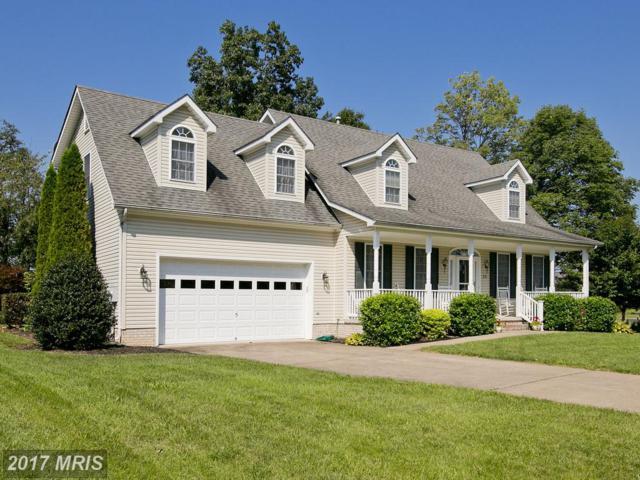 238 Bentley Avenue, Winchester, VA 22602 (#FV10037542) :: Pearson Smith Realty