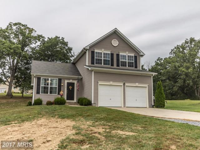 115 Colonial Drive, Cross Junction, VA 22625 (#FV10039569) :: Pearson Smith Realty