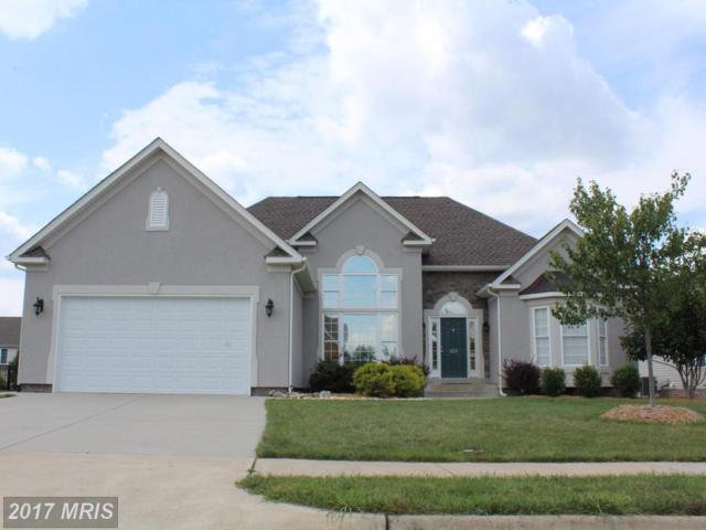 222 Summerfield Drive, Winchester, VA 22602 (#FV10045183) :: Pearson Smith Realty