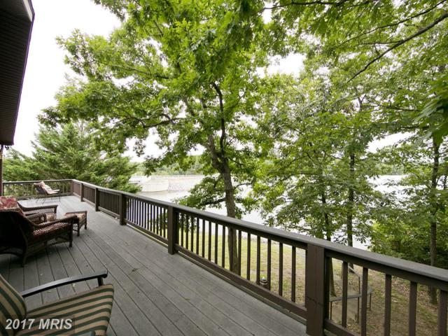 262 South Lakeview Drive, Cross Junction, VA 22625 (#FV10048175) :: Pearson Smith Realty