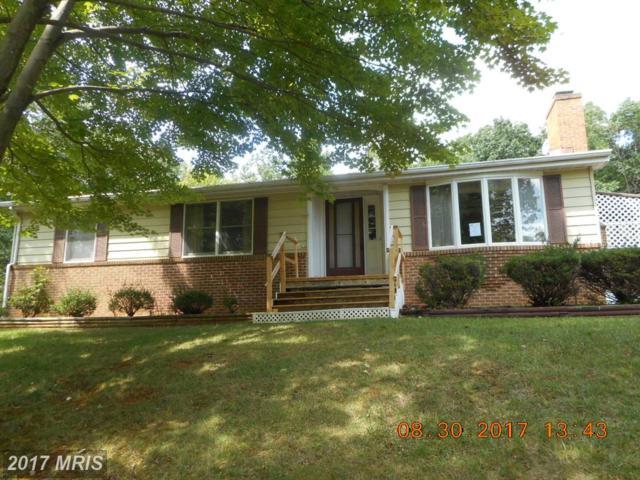 503 Cardinal Drive, Winchester, VA 22602 (#FV10049377) :: Pearson Smith Realty
