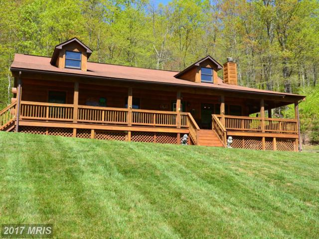 317 Outback Trail, Winchester, VA 22602 (#FV10049779) :: Pearson Smith Realty