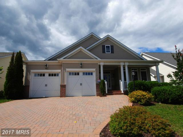 131 Harvest Ridge Drive, Winchester, VA 22601 (#FV10050704) :: Pearson Smith Realty