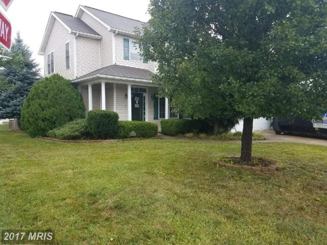 101 Clydesdale Drive, Stephens City, VA 22655 (#FV10053100) :: Pearson Smith Realty