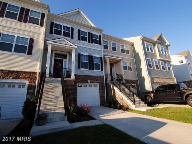 217 Cobble Stone Drive, Winchester, VA 22602 (#FV10054019) :: Pearson Smith Realty