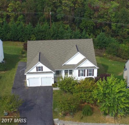 293 Fortress Drive, Winchester, VA 22603 (#FV10064085) :: Pearson Smith Realty