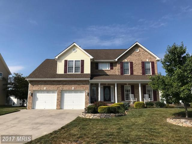 102 Donegal Court, Winchester, VA 22602 (#FV10067377) :: Pearson Smith Realty