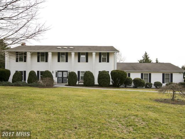 138 Mountain View Lane, Winchester, VA 22602 (#FV10071270) :: LoCoMusings