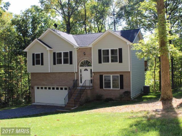 151 Falcon Trail, Winchester, VA 22602 (#FV10072343) :: Pearson Smith Realty