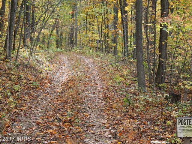 0 Speelman Drive, Winchester, VA 22603 (#FV10078310) :: Pearson Smith Realty