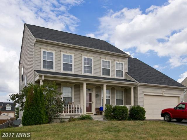 403 Craig Drive, Stephens City, VA 22655 (#FV10079065) :: Pearson Smith Realty