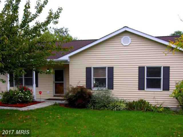 131 Obriens Circle, Winchester, VA 22602 (#FV10080560) :: LoCoMusings