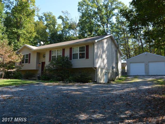 115 Cochise Trail, Winchester, VA 22602 (#FV10082279) :: Pearson Smith Realty
