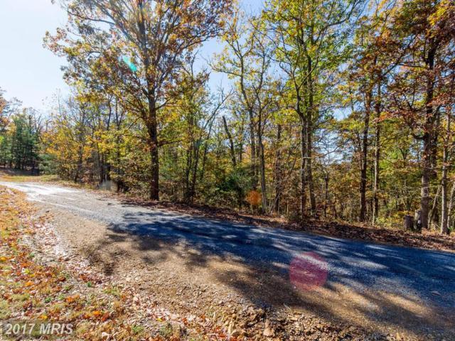 Gun Barrel Lane, Winchester, VA 22603 (#FV10089157) :: Pearson Smith Realty