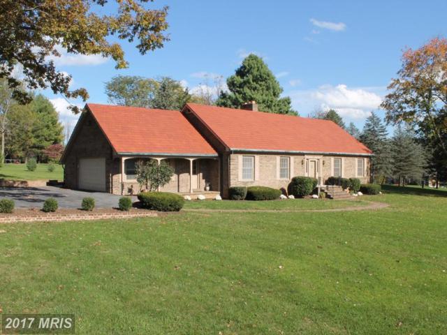 104 Weitzell Place, Winchester, VA 22601 (#FV10090090) :: LoCoMusings