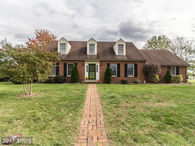 200 Brandylion Drive, Stephens City, VA 22655 (#FV10098550) :: Pearson Smith Realty