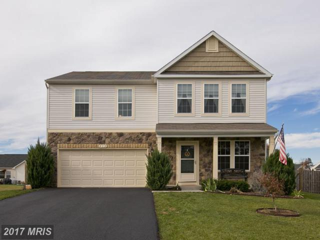 213 Ivy Hill Court, Stephens City, VA 22655 (#FV10104544) :: Wilson Realty Group
