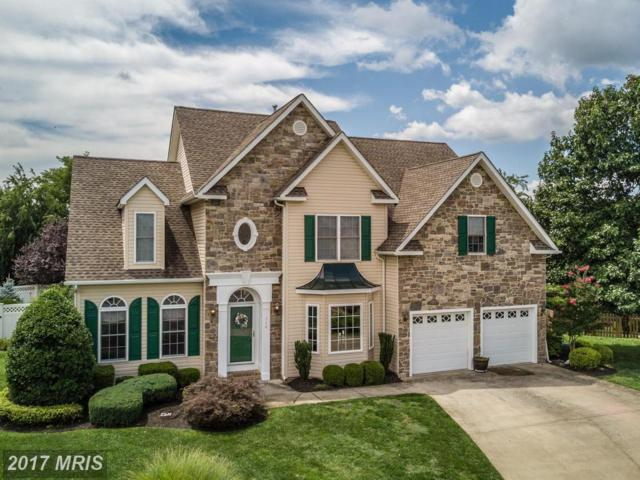 110 Donegal Court, Winchester, VA 22602 (#FV10106551) :: The Nemerow Team