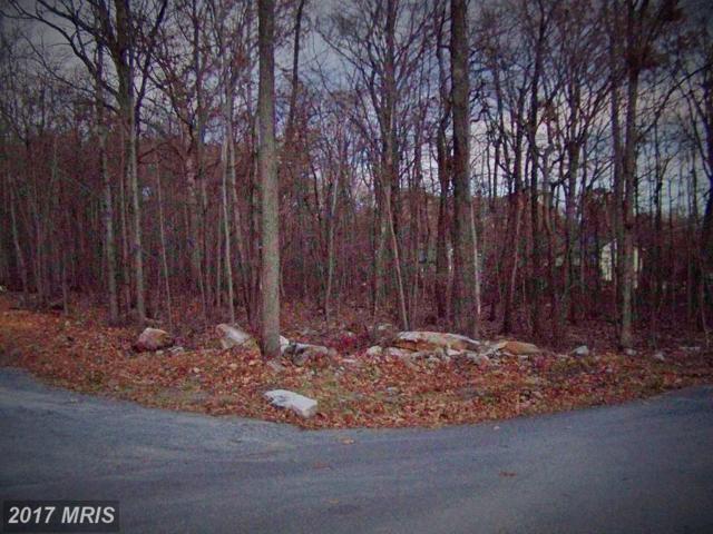 Cochise, Winchester, VA 22602 (#FV10109520) :: Dart Homes