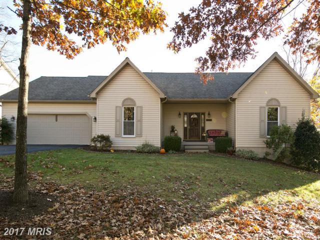 135 Lake Holiday Road, Cross Junction, VA 22625 (#FV10112521) :: Pearson Smith Realty