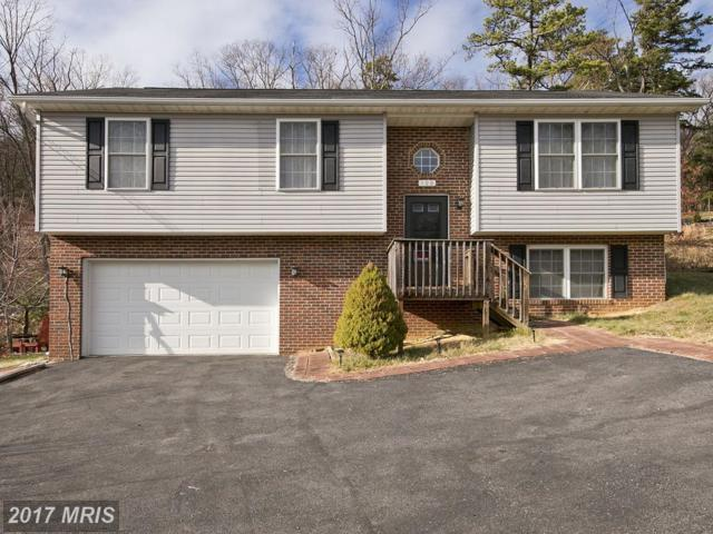 108 Willow Trail, Winchester, VA 22602 (#FV10123249) :: The Gus Anthony Team