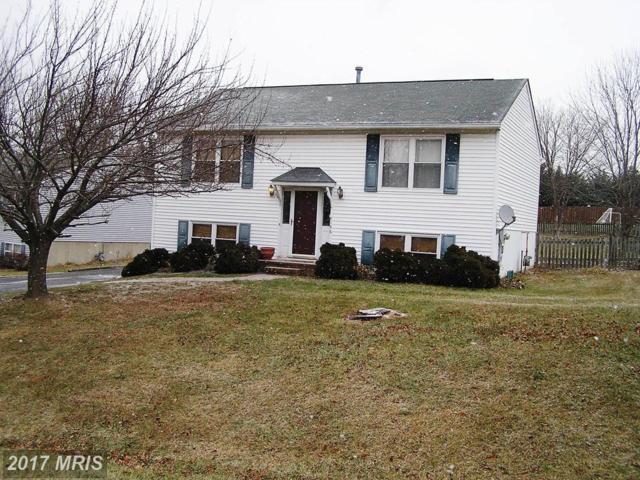 146 Pembridge Drive, Winchester, VA 22602 (#FV10125234) :: Pearson Smith Realty