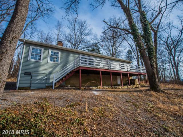 121 Pinto Trail, Winchester, VA 22602 (#FV10126762) :: The Gus Anthony Team