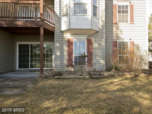 113 Timberlake Terrace #3, Stephens City, VA 22655 (#FV10135512) :: Pearson Smith Realty