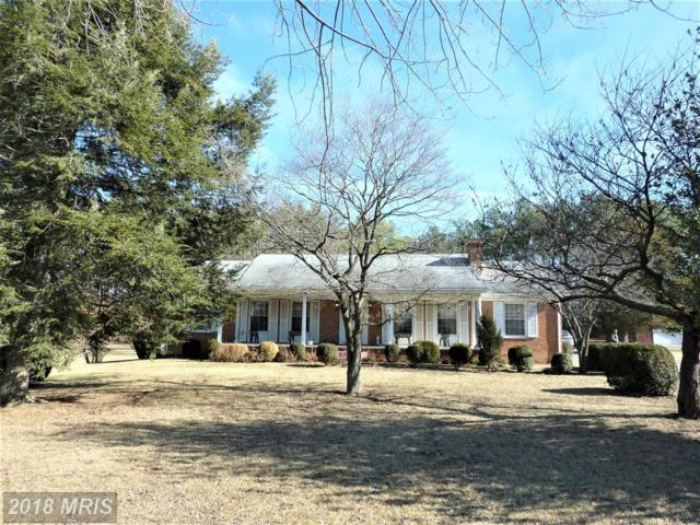 1231 Front Royal Pike, Winchester, VA 22602 (#FV10138184) :: The Nemerow Team
