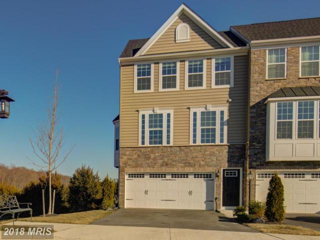 190 Trout Lily Drive, LAKE FREDERICK, VA 22630 (#FV10139064) :: The Nemerow Team