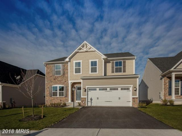 110 Coneflower Way, LAKE FREDERICK, VA 22630 (#FV10140217) :: Browning Homes Group