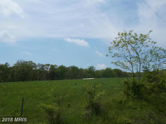 Ridgeview Road, Gore, VA 22637 (#FV10157506) :: AJ Team Realty