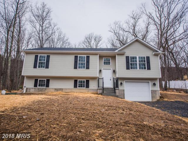 304 Graywolf Trail, Winchester, VA 22602 (#FV10159779) :: The Maryland Group of Long & Foster