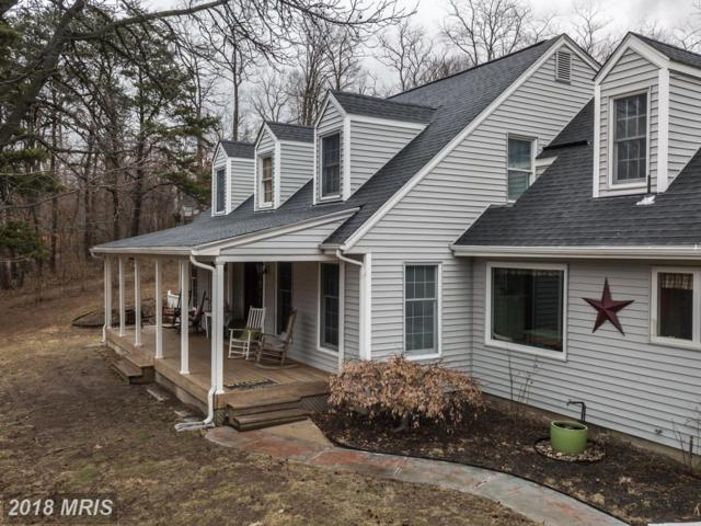 124 Spring Valley Drive, Winchester, VA 22603 (#FV10161638) :: The Gus Anthony Team