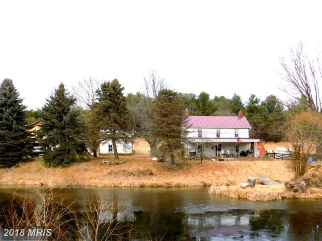 290 Howards Chapel Road, Winchester, VA 22603 (#FV10163962) :: The Miller Team