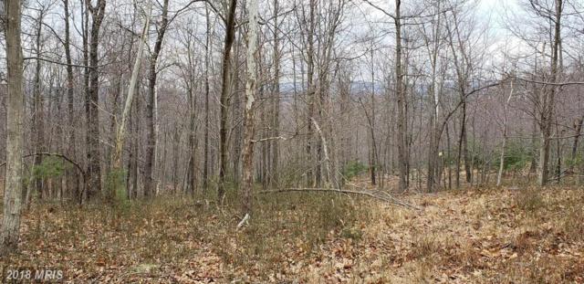 170 Leaning Oak Road, Winchester, VA 22603 (#FV10185174) :: Gail Nyman Group