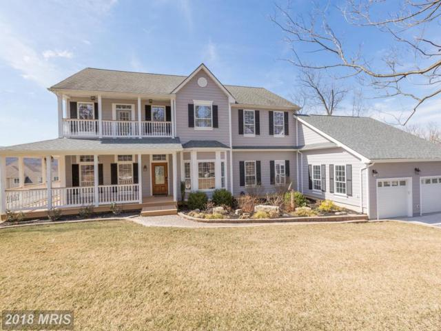141 Old Baltimore Road, Winchester, VA 22603 (#FV10186772) :: Pearson Smith Realty