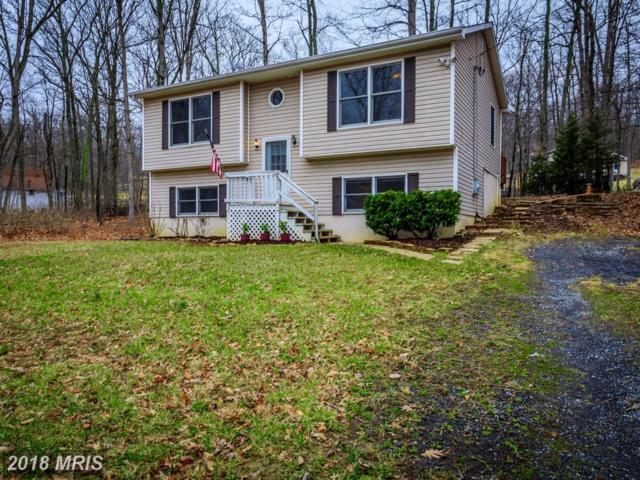 232 Doe Trail, Winchester, VA 22602 (#FV10196606) :: Browning Homes Group