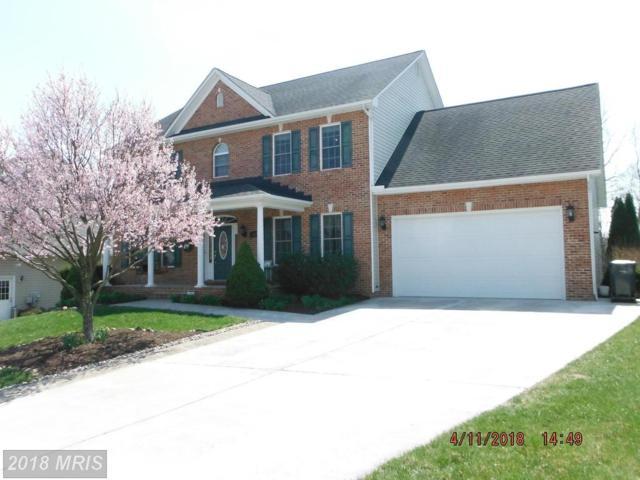 107 Falabella Drive, Stephens City, VA 22655 (#FV10206941) :: Keller Williams Pat Hiban Real Estate Group