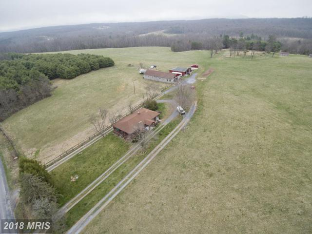1247 Middle Fork Road, Cross Junction, VA 22625 (#FV10220498) :: Bruce & Tanya and Associates